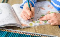 Best Coloring Books for Adults In 2021